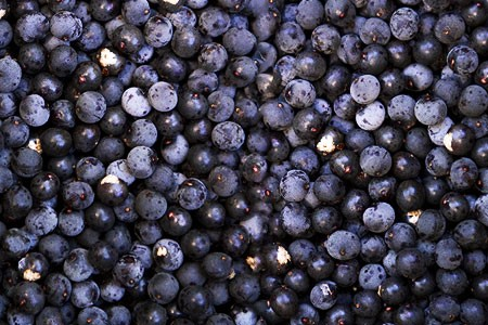 What are nutrition of Acai Berry